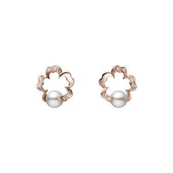 Pierced Earrings - PE-1745PI