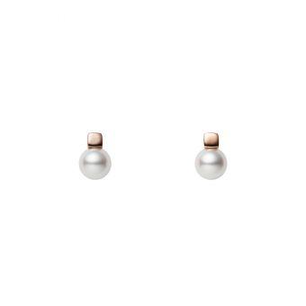 Pierced Earrings - PE-1726PI