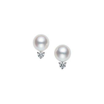 Pierced Earrings - PE-955PU