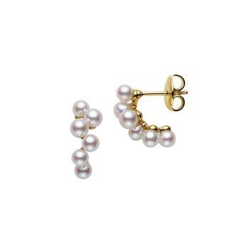 Pierced Earrings - PE-1408PK