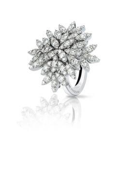 Ghirlanda Ring - 11979B