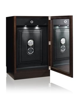 COLLECTOR SAFE INBUILT -